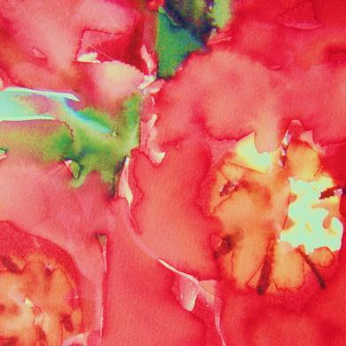 flores rojas - copia.jpg