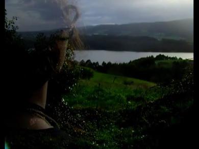 Fotograma da peza de video 'Wild Geese'.